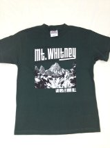 I Climbed Mt. Whitney (Youth T-Shirt)
