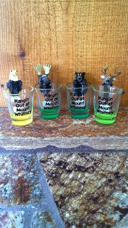 Hangin' out Shot Glasses
